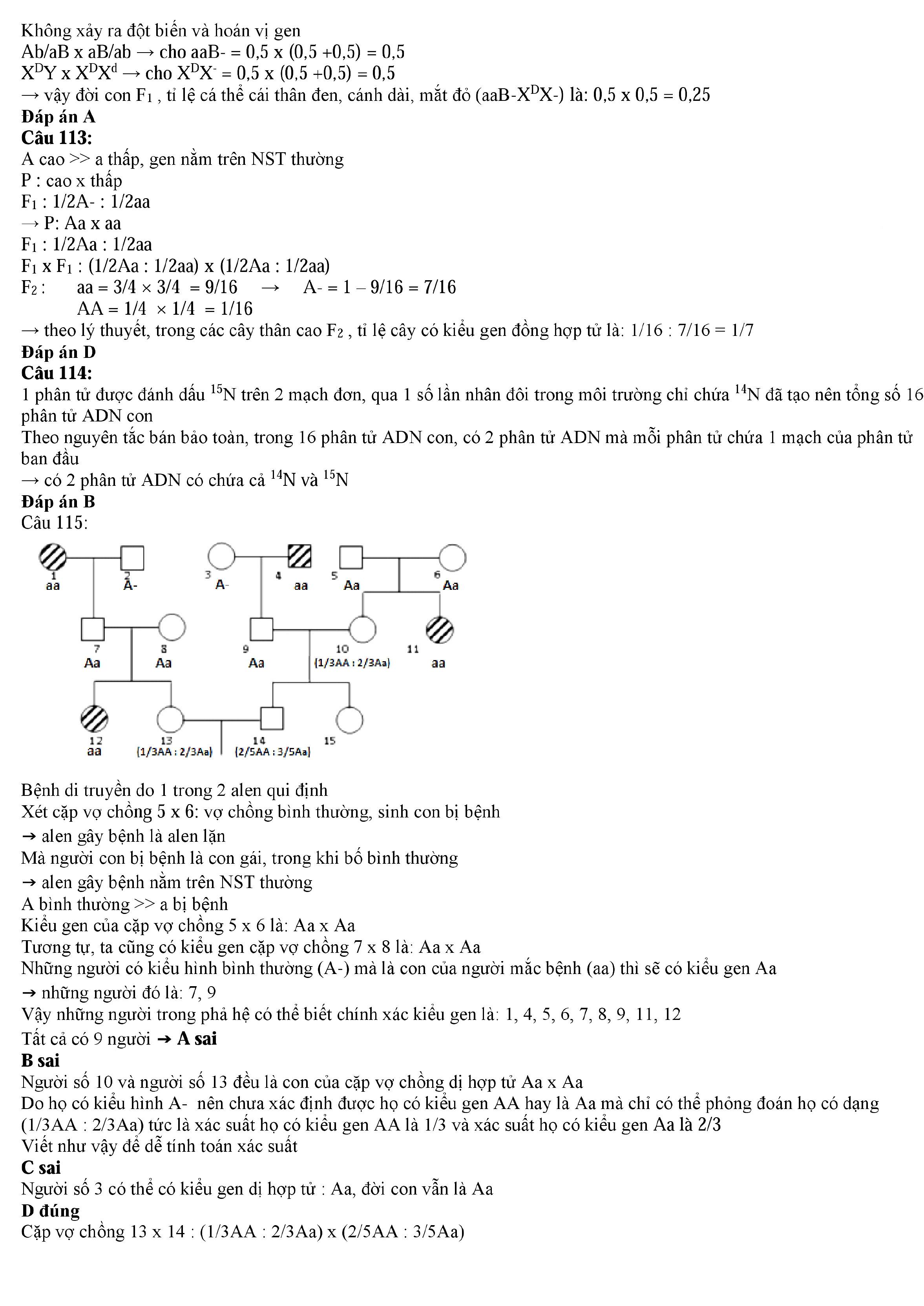 Đề thi thử môn Sinh Học đề thi minh họa lần 3 có lời giải chi tiết