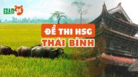 Đề thi HSG lớp 9 môn Sinh huyện Tiền Hải tỉnh Thái Bình năm 2018