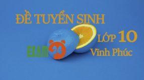 Đề thi tuyển sinh lớp 10 môn Anh THPT tỉnh Vĩnh Phúc năm 2016 - 2017