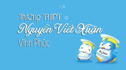 Đề thi thử môn Sinh trường THPT Nguyễn Viết Xuân - Vĩnh Phúc lần 1 - 2018