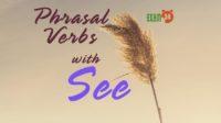 Phrasal Verbs with See - Cụm động từ trong tiếng Anh