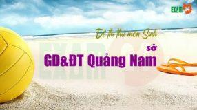 Đề thi thử môn Sinh sở GD&ĐT Quảng Nam lần 1 - 2019
