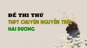 Đề thi thử môn Sinh trường THPT Chuyên Nguyễn Trãi - Hải Dương lần 1 - 2019