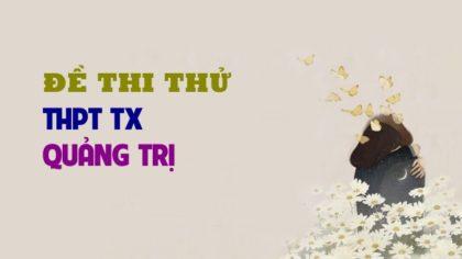 Đề thi thử môn Sinh trường THPT TX Quảng Trị - lần 1 - 2019