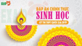 Dap an chinh thuc mon Sinh 2019 cua bo gd&dt