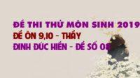 GIẢI CHI TIẾT Đề thi thử môn Sinh 2019 - Đề ôn 9,10 - thầy Đinh Đức Hiền - Đề số 08