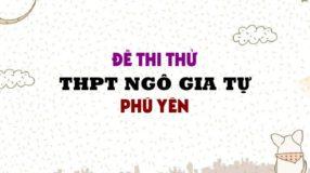 Đề thi thử môn Anh trường THPT Ngô Gia Tự - Phú Yên lần 2 - 2019