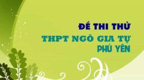 Đề thi thử môn Sinh trường THPT Ngô Gia Tự - Phú Yên lần 2 - 2019
