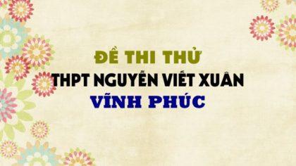 Đề thi thử môn Anh trường THPT Nguyễn Viết Xuân - Vĩnh Phúc lần 4 - 2019