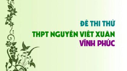 Đề thi thử môn Sinh trường THPT Nguyễn Viết Xuân - Vĩnh Phúc lần 4 - 2019